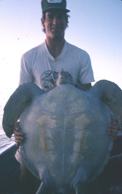 Jeff Seminoff with the first turtle he and J ever caught.