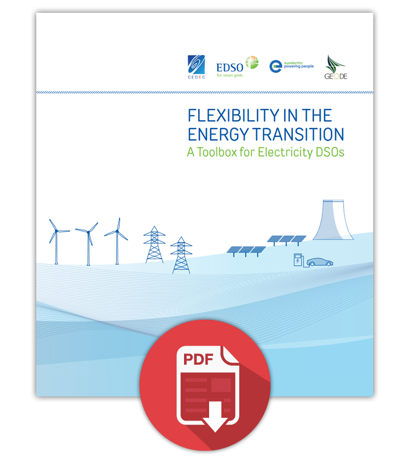 Flex Report Partner.png