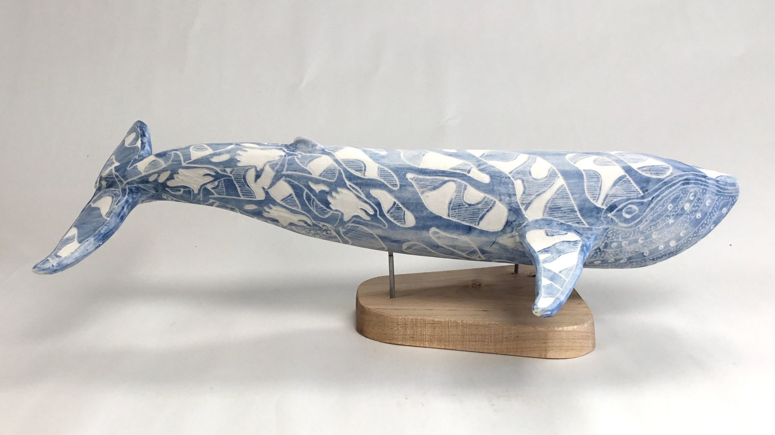 Blue Whale with Dolphins