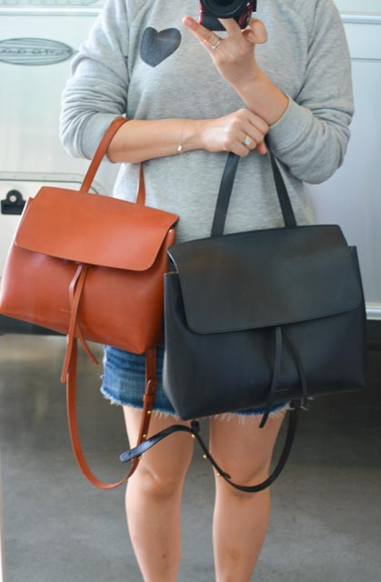 Mini Lady Bag vs. Regular Lady Bag