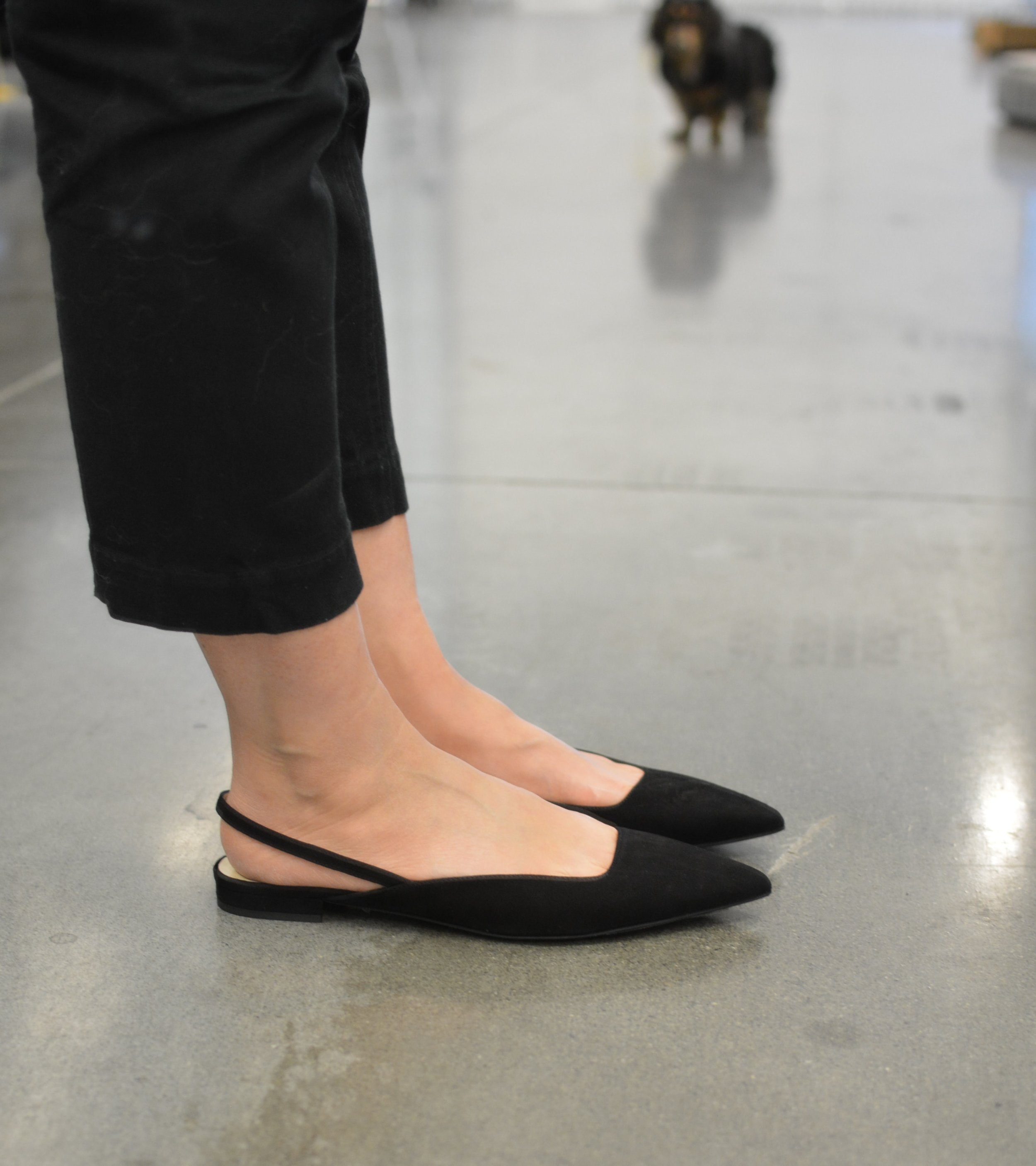 Everlane Review The Editor Slingback shoe (1 of 2)-min.jpg