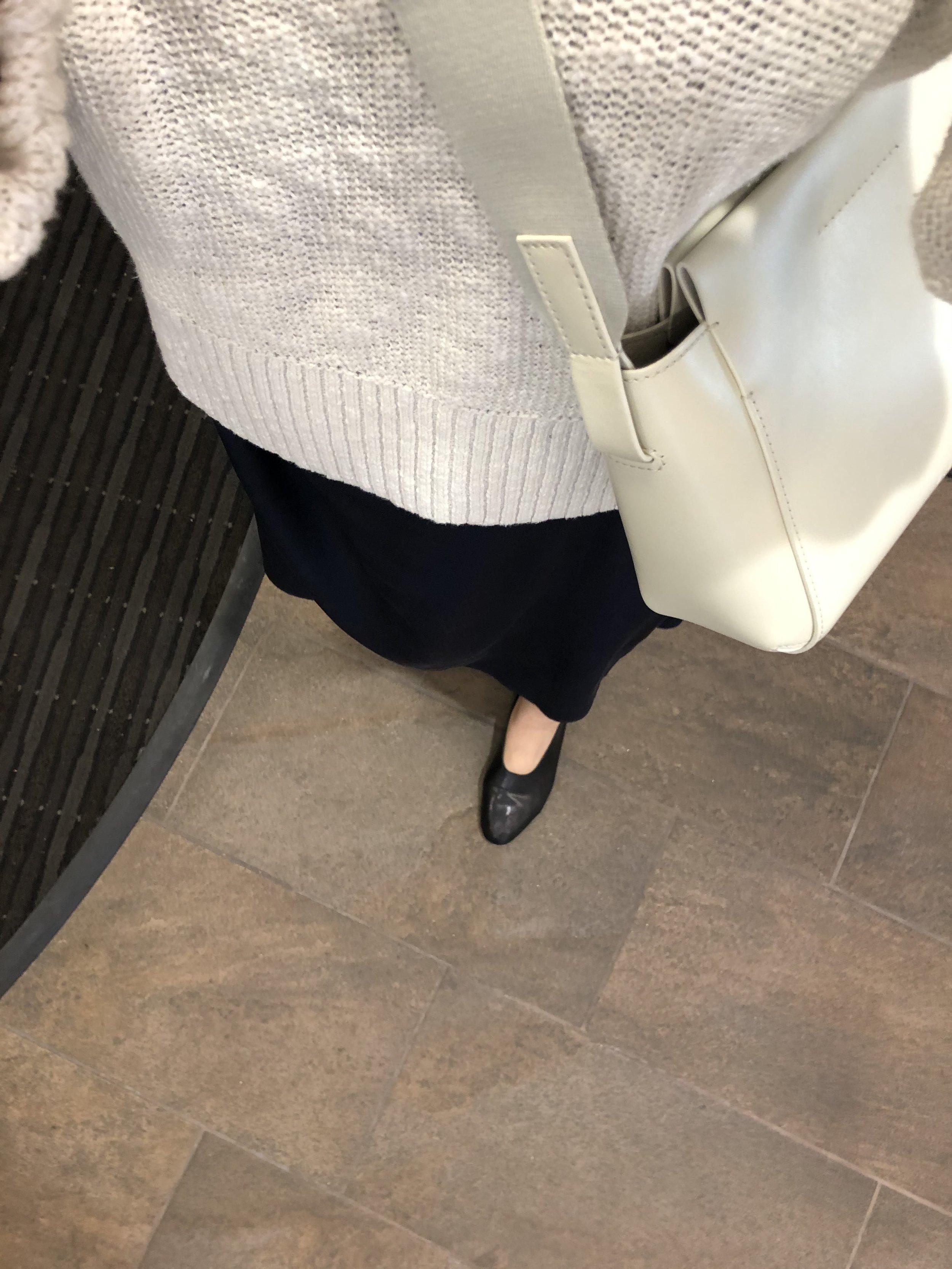 Everlane Review Mini Form Bag