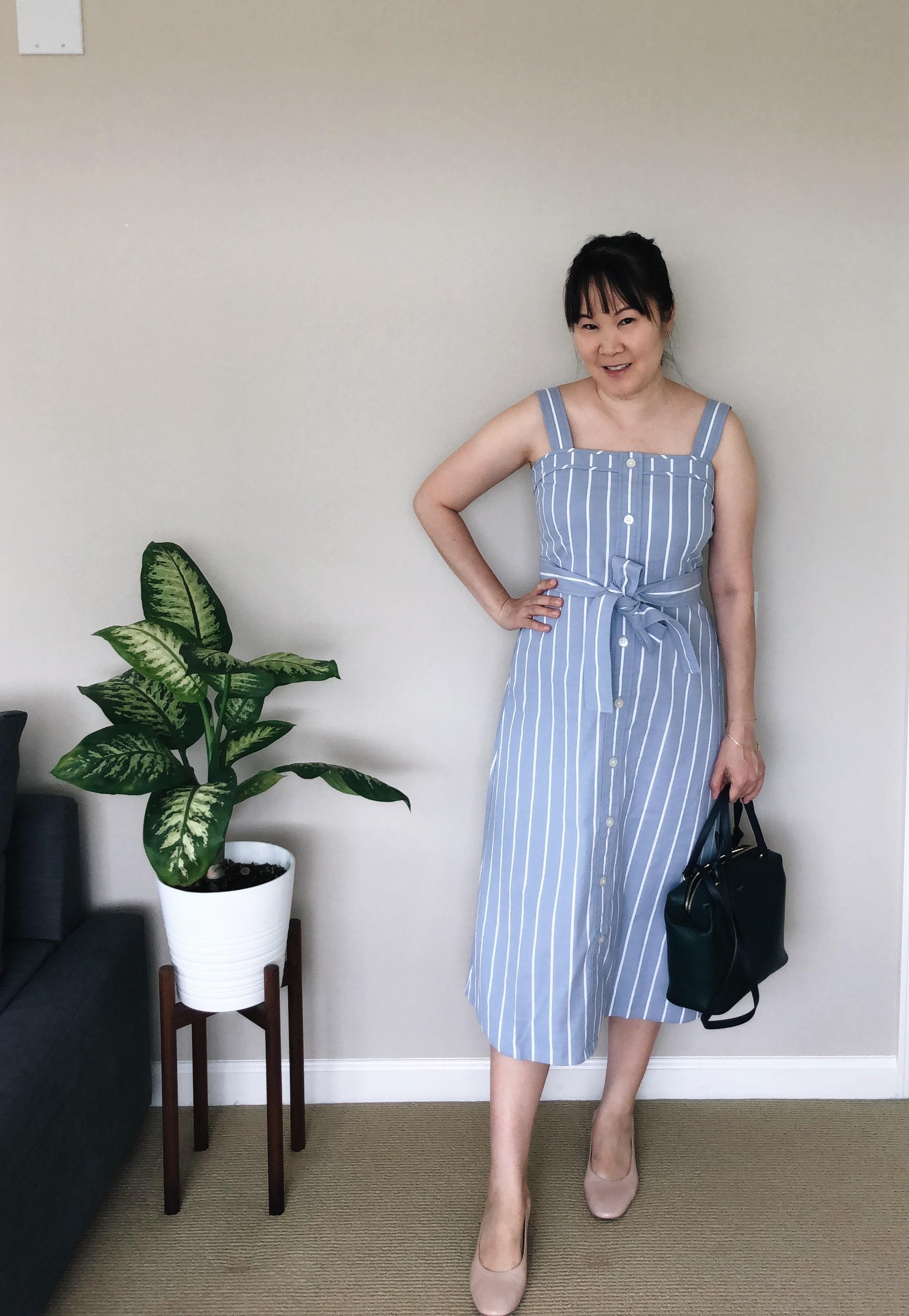 Everlane Review Picnic Dress