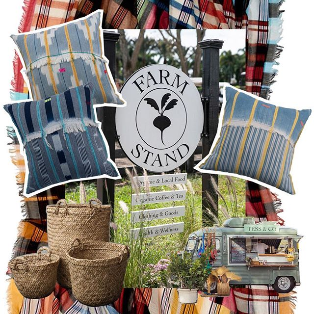 👋 helloooooo Florida 🐊!! we're here this weekend Fri/Sat/Sun, 8:30 until 4:30 @farmstand at the Winter Equestrian Festival @esp_wef in Wellington. FARM STAND is located at the horse show between Pony Island and the Grand Hunter Ring. 🌴 hope to see u here! we'll have our fabulous vintage textile pillows, Peruvian baskets, Liberty fabric belts - and - ta da - super chic - Liberty fabric DOG COLLARS!! hot off the press. come and get 'em! ⠀⠀⠀⠀⠀⠀⠀⠀⠀ #choixhome #choixpping #vintagetextiles #farmstand #winterequestrianfestival #wef2019 #horseshowlife #wellingtonflorida #palmbeachpopupshop