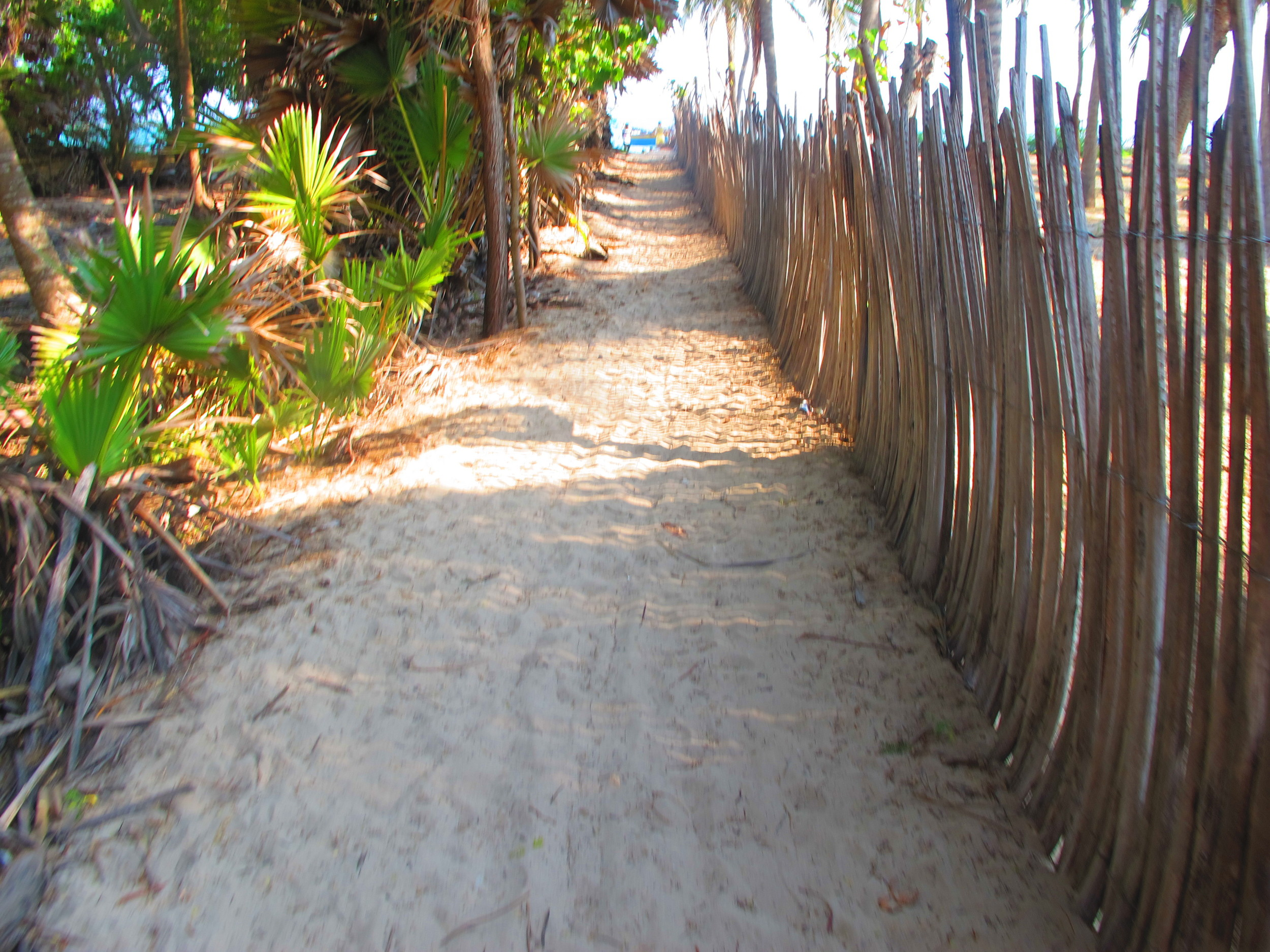 All roads lead to the beach #LifeinthedeepSouth