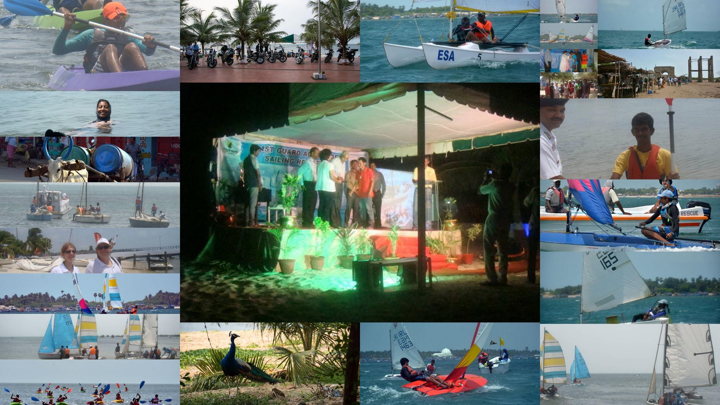 Aqua Node Collage.jpg