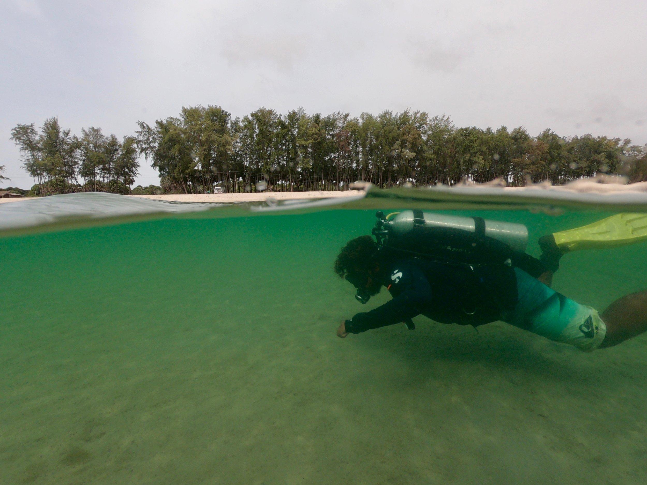 scuba-dive - 1 (4).jpg