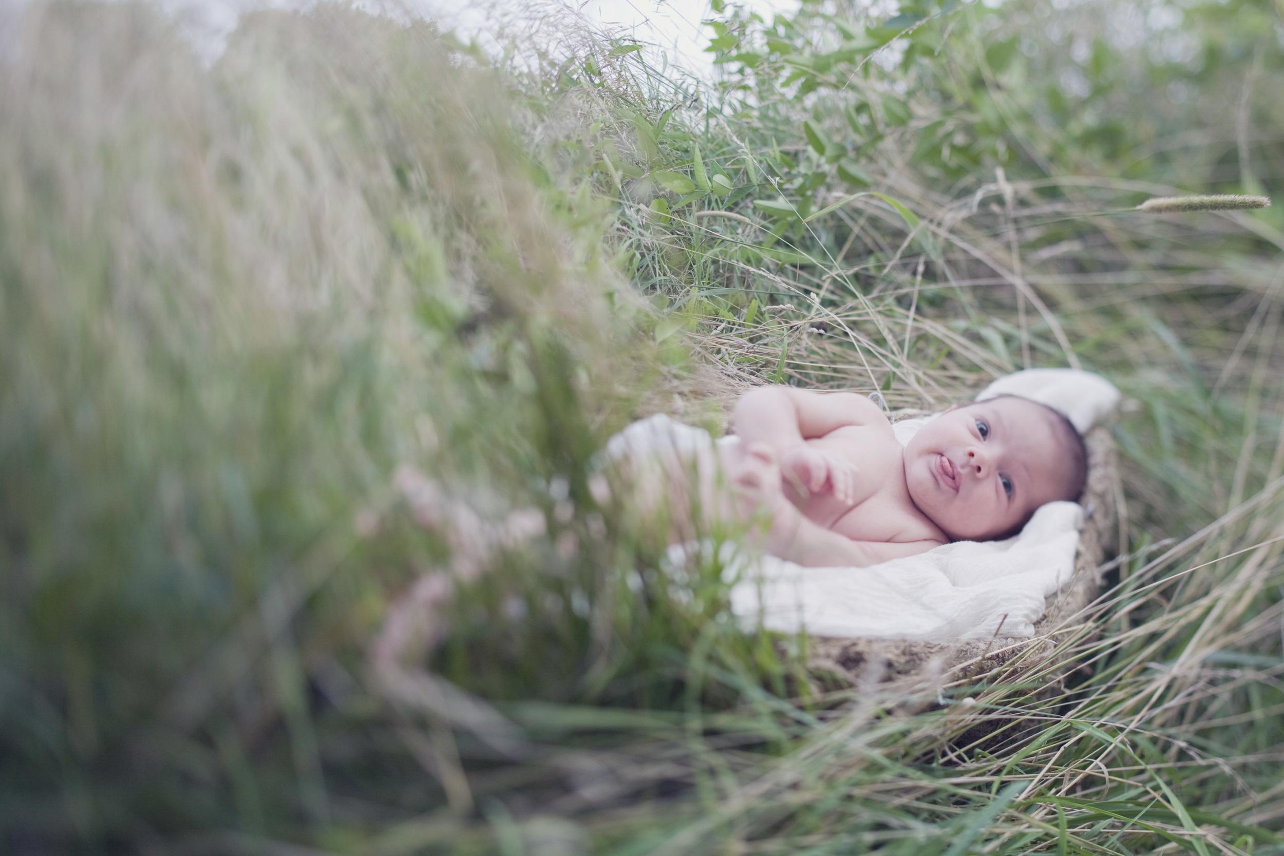 Bucks County newborn photography