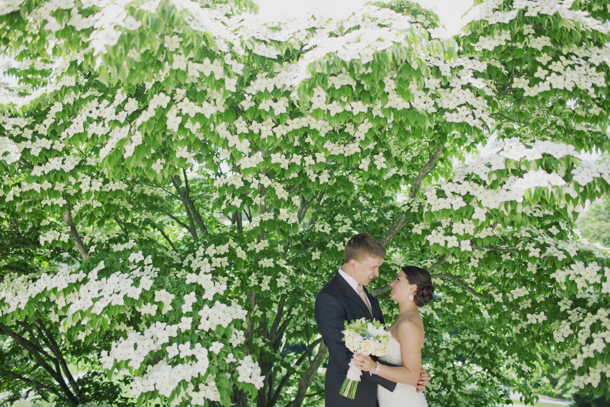 Cairnwood wedding photography