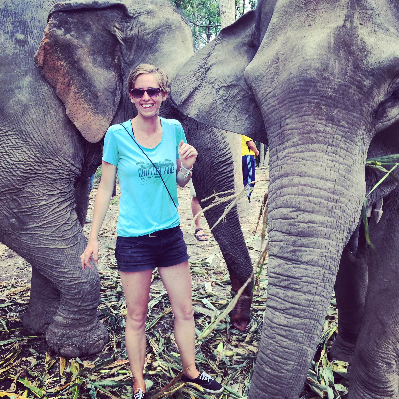 elephantsanctuary1