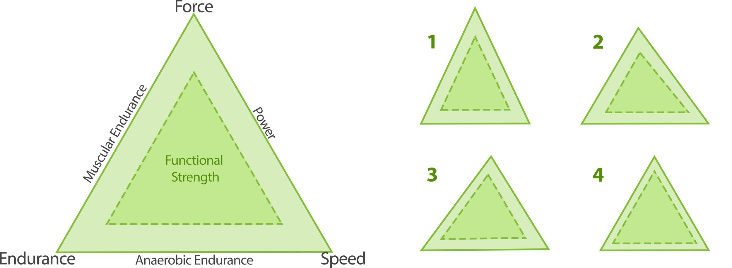 Modified Tudor Bompa Triangle