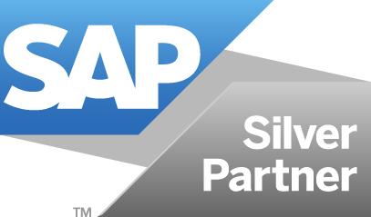 Finbridge SAP Silver Partner