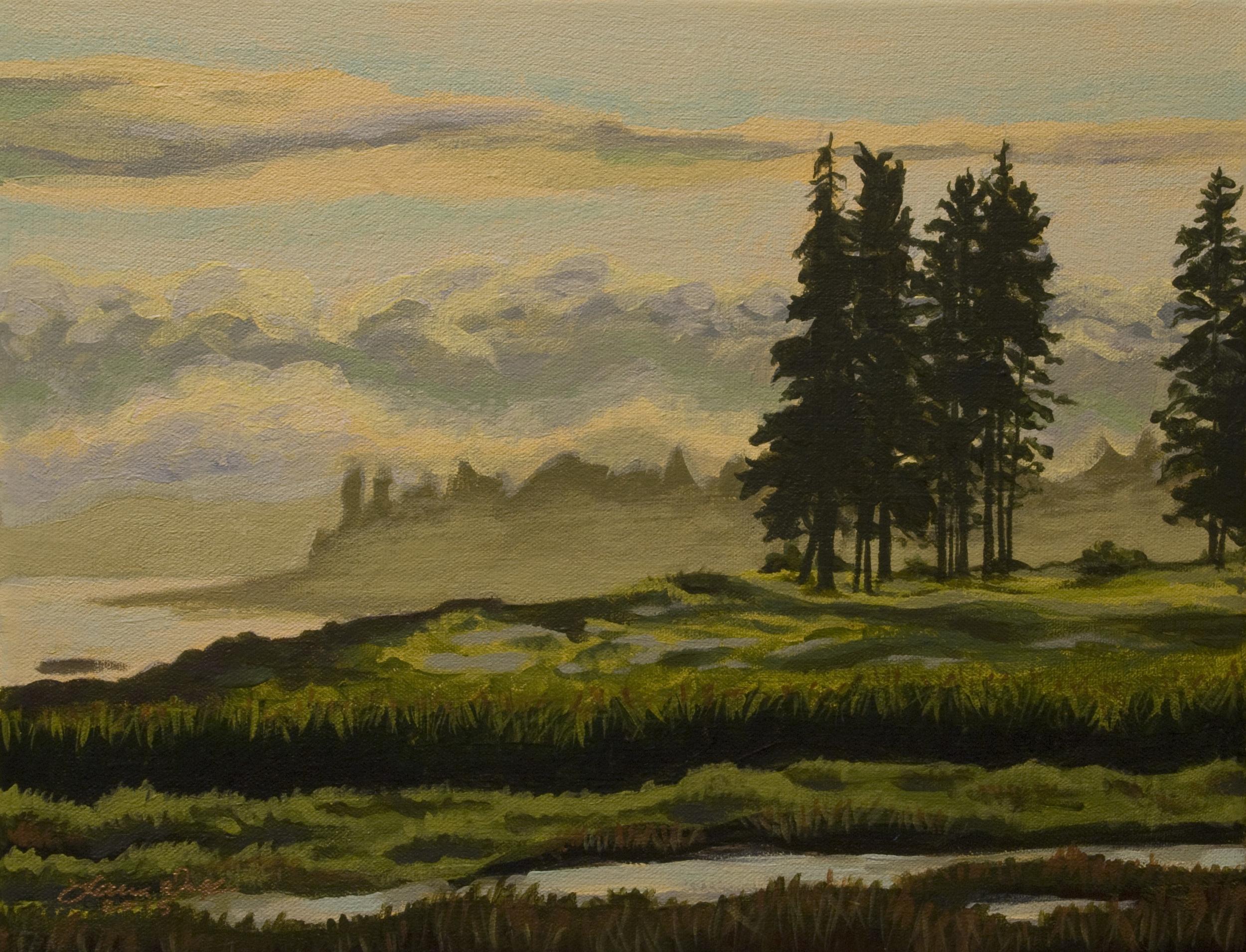 Maine Marsh 1