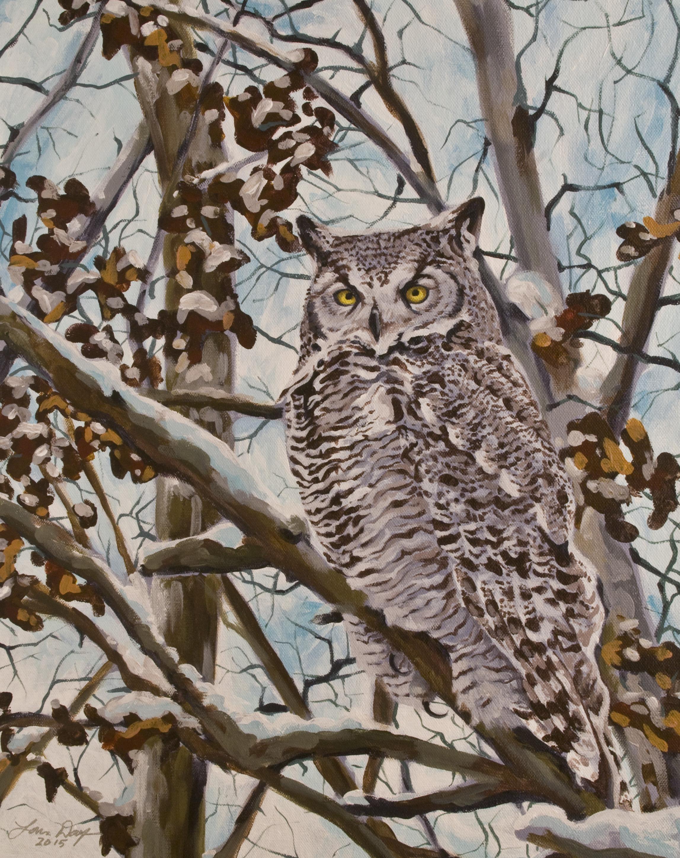 Sam's Great Horned Owl
