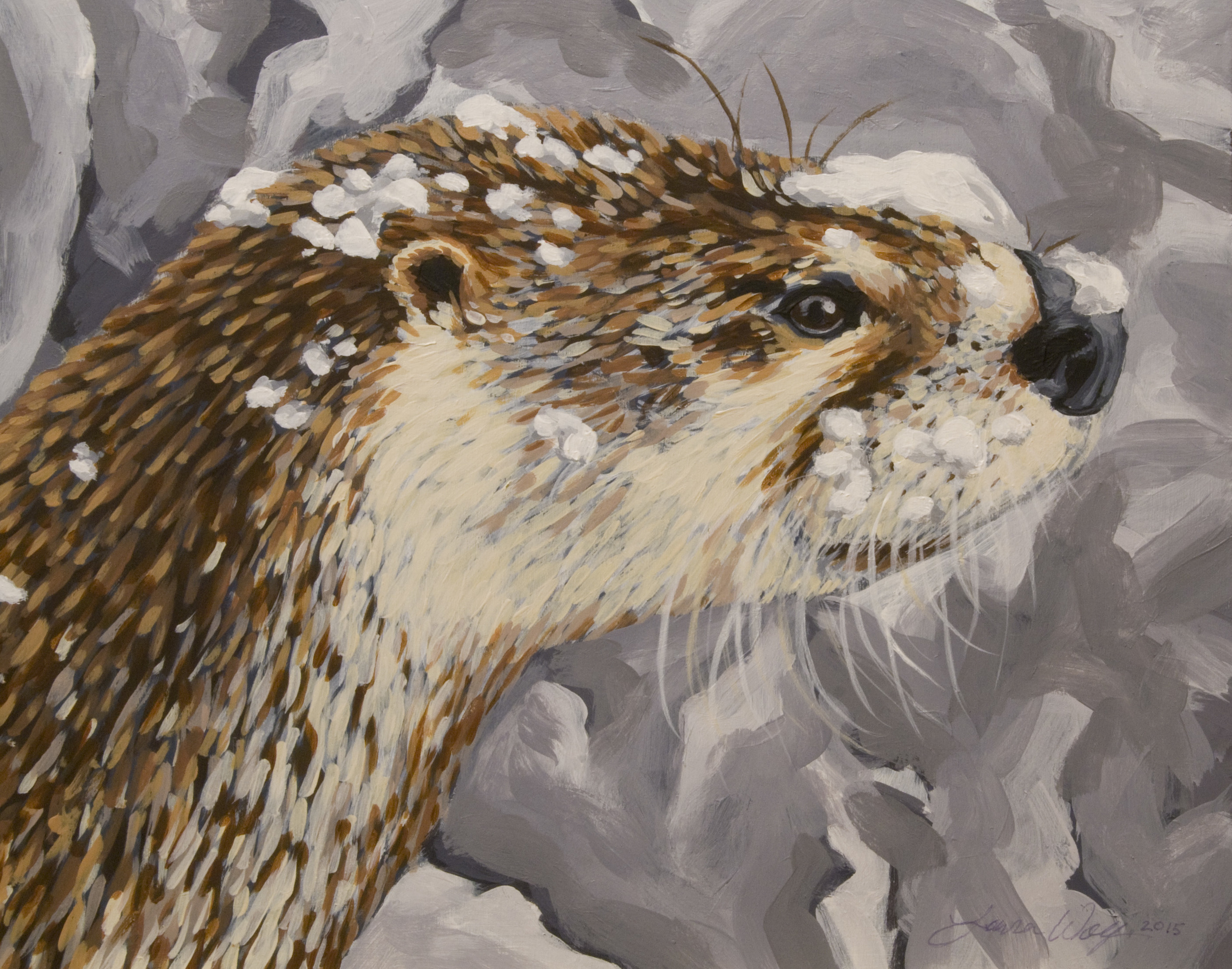 Elvis, a North American River Otter
