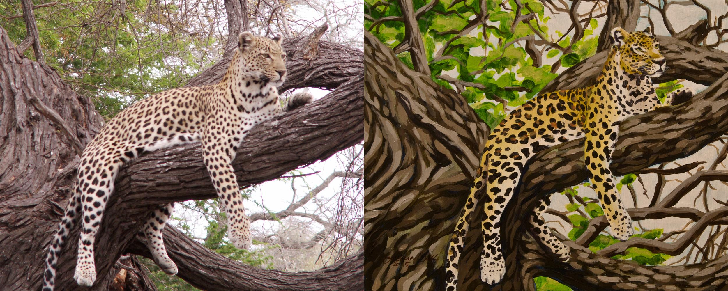Leopard, for Sarah Widman