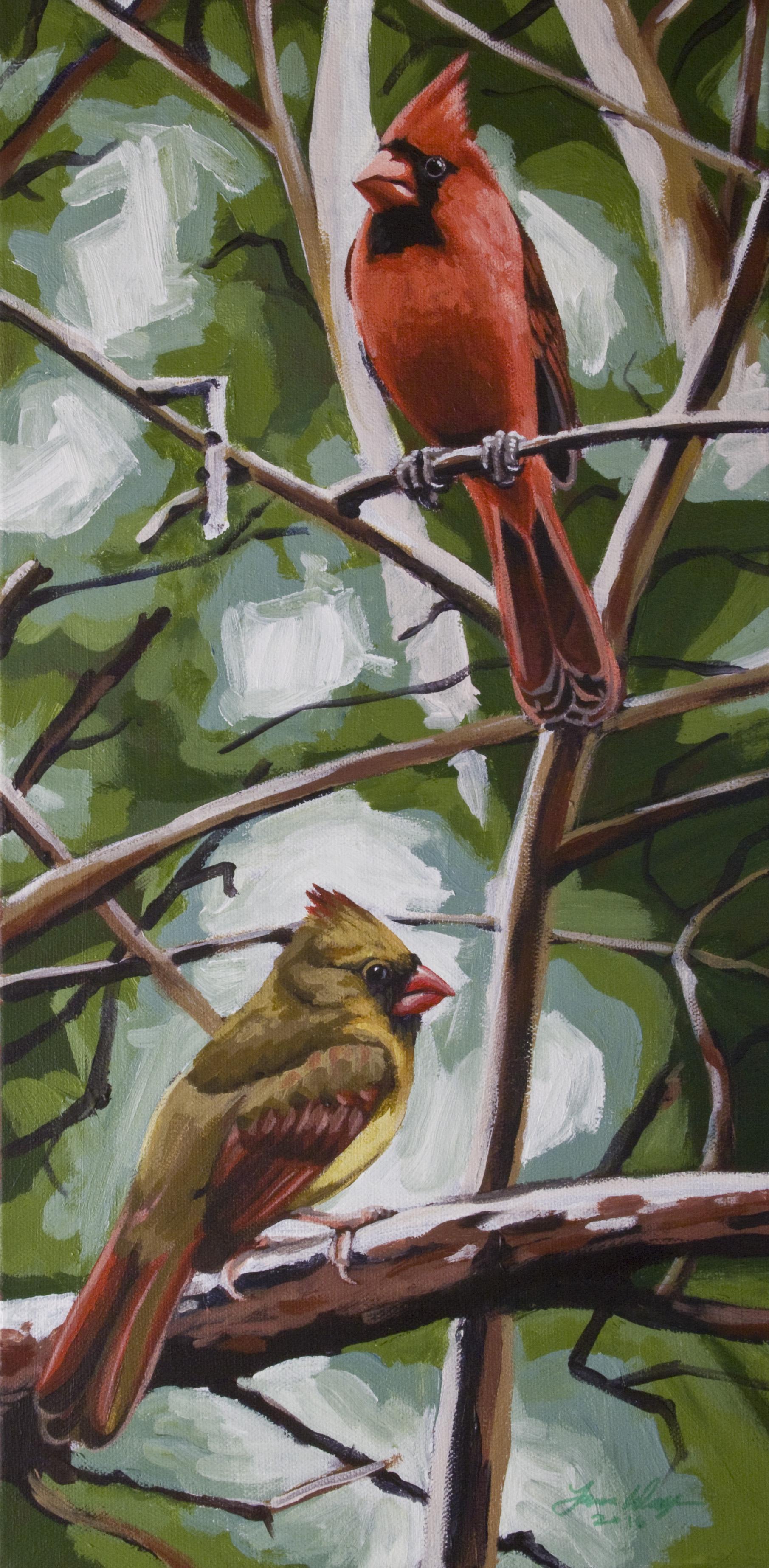 Lolita's Cardinals