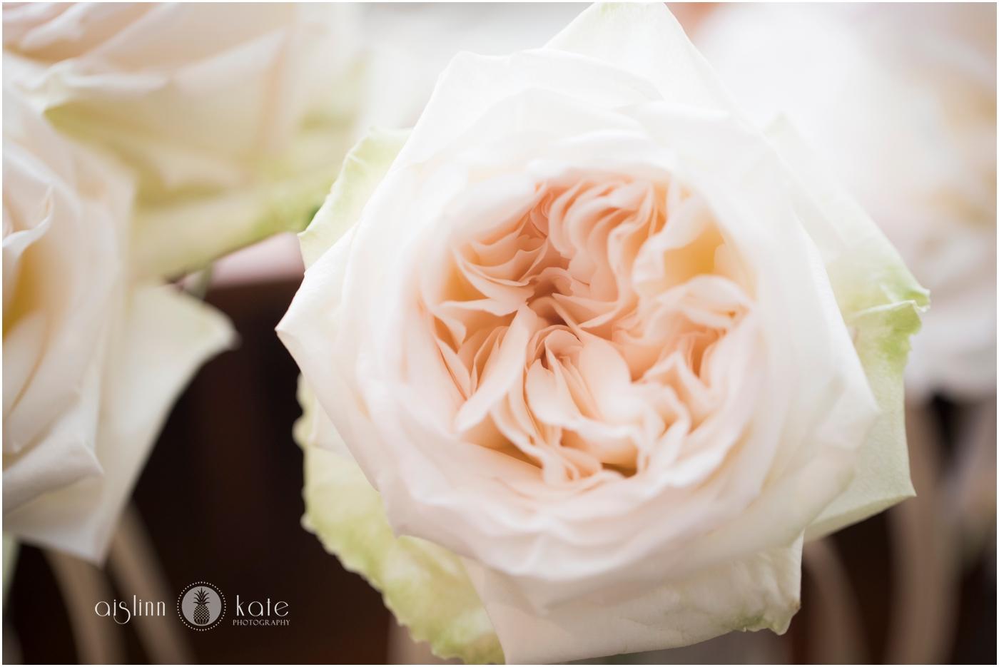 Pensacola-Destin-Wedding-Photographer_9309.jpg