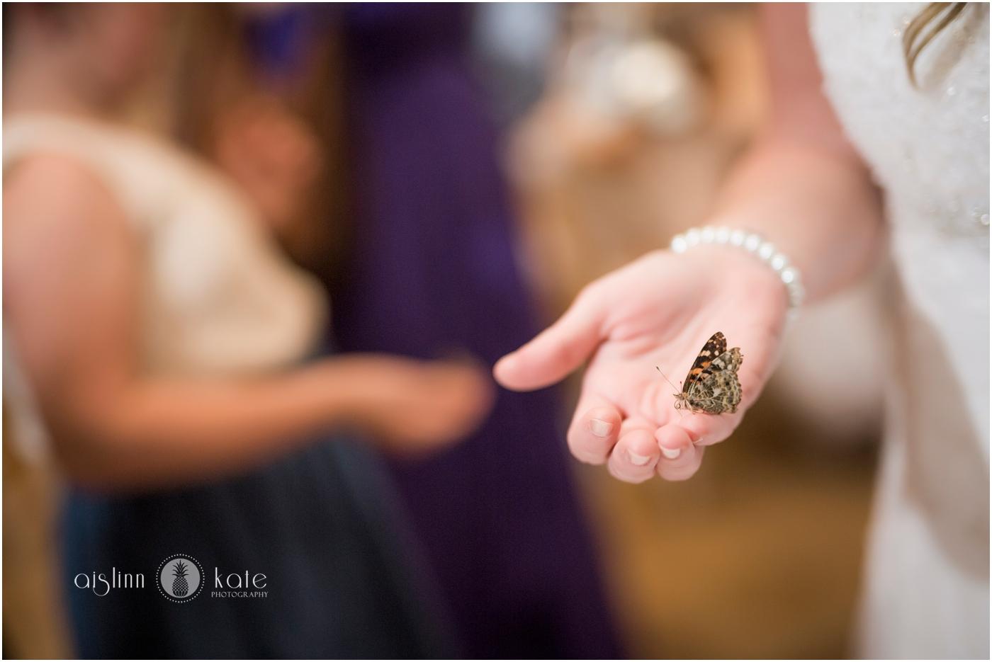 Pensacola-Destin-Wedding-Photographer_9283.jpg