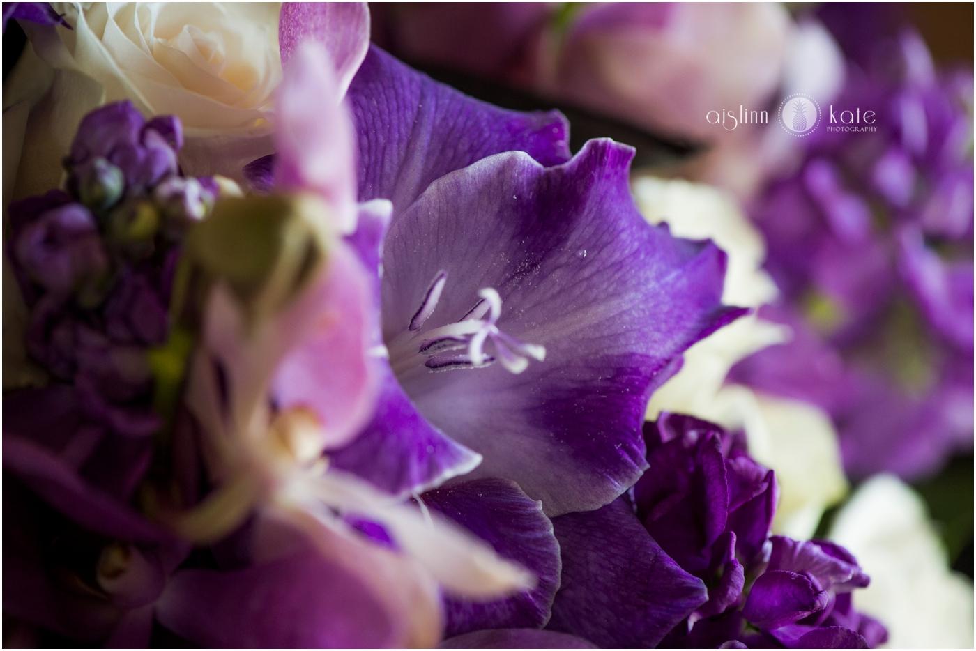 Pensacola-Destin-Wedding-Photographer_7450.jpg