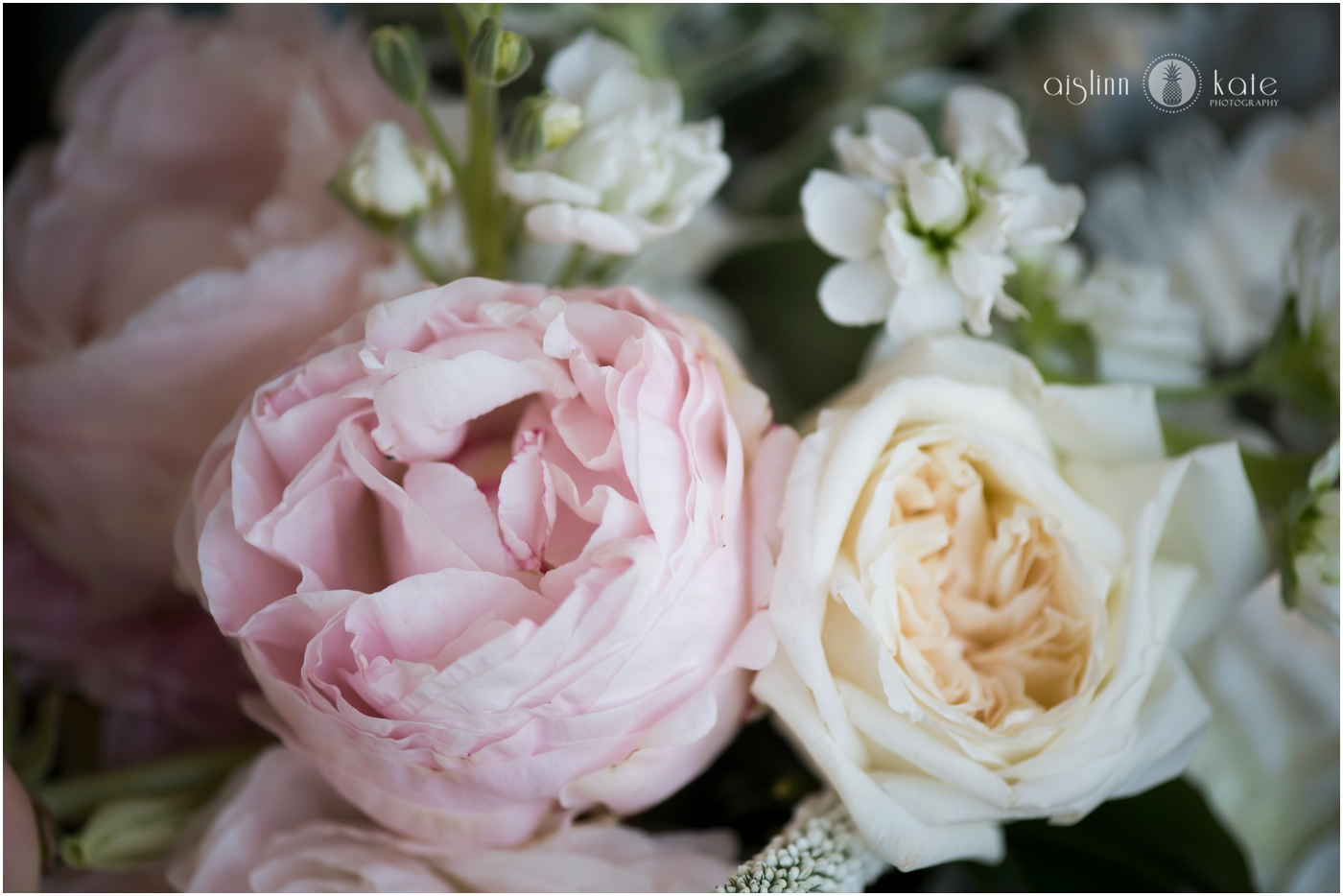 Pensacola-Destin-Wedding-Photographer_6021.jpg