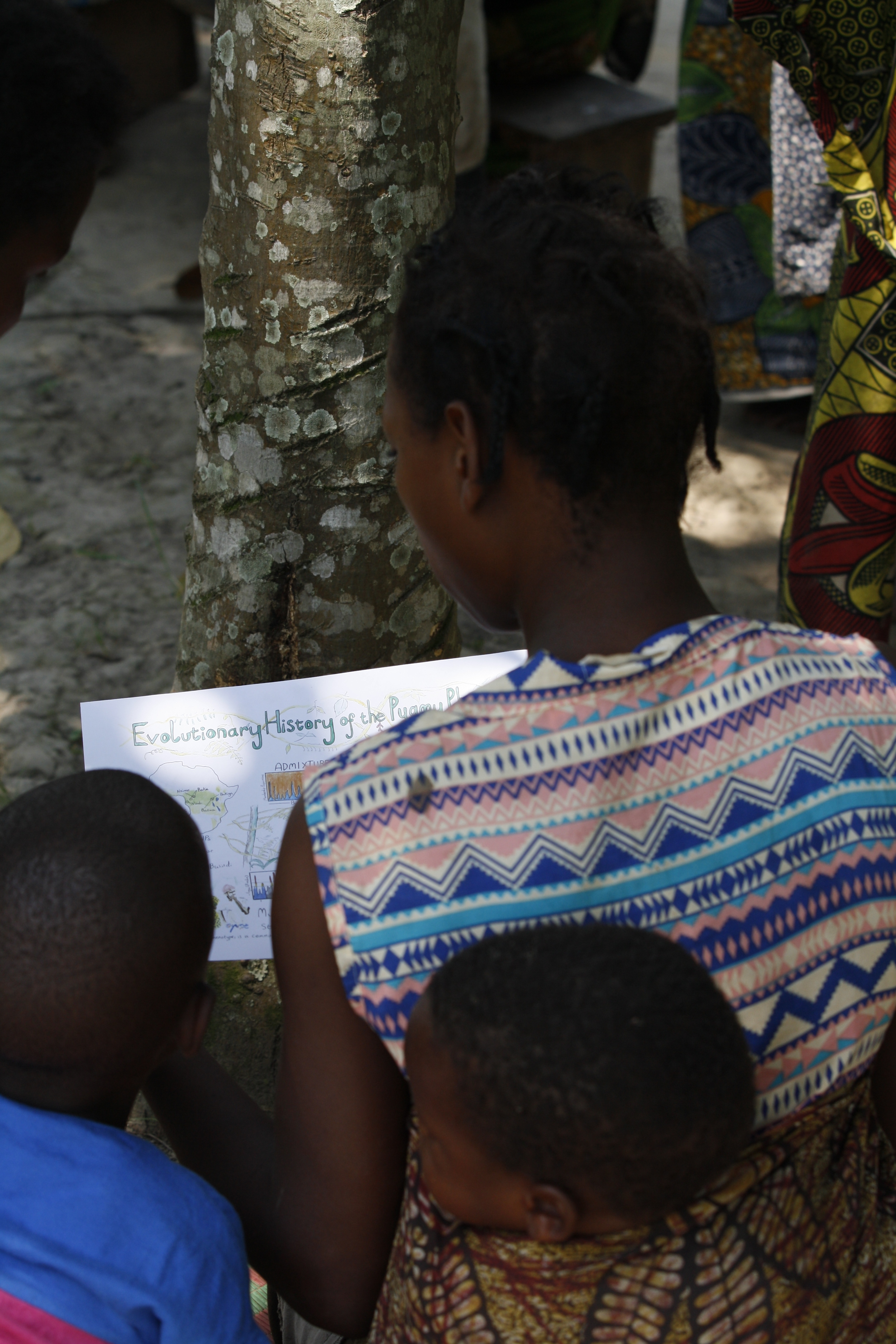Batwa woman and child viewing an illustration by Alex Cagan of results from our  Perry et al. 2014  study, when we visited the participant communities to present and discuss those results.