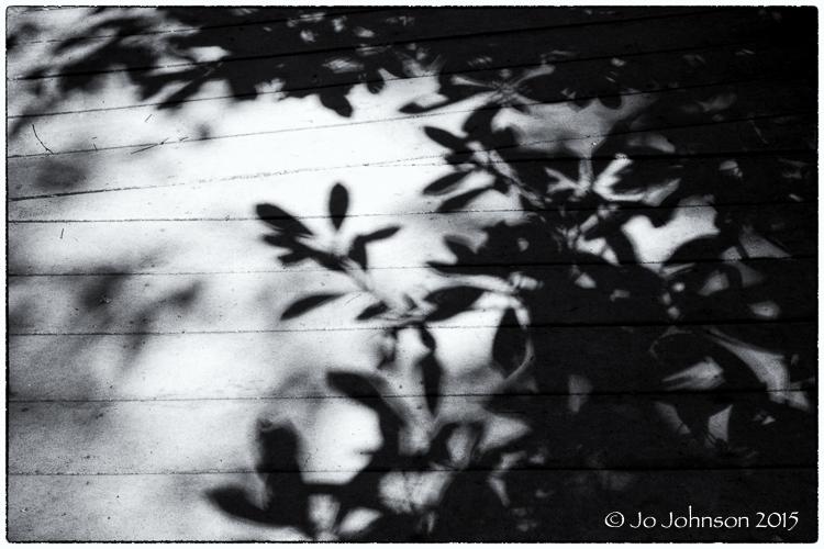 Walkway shadows