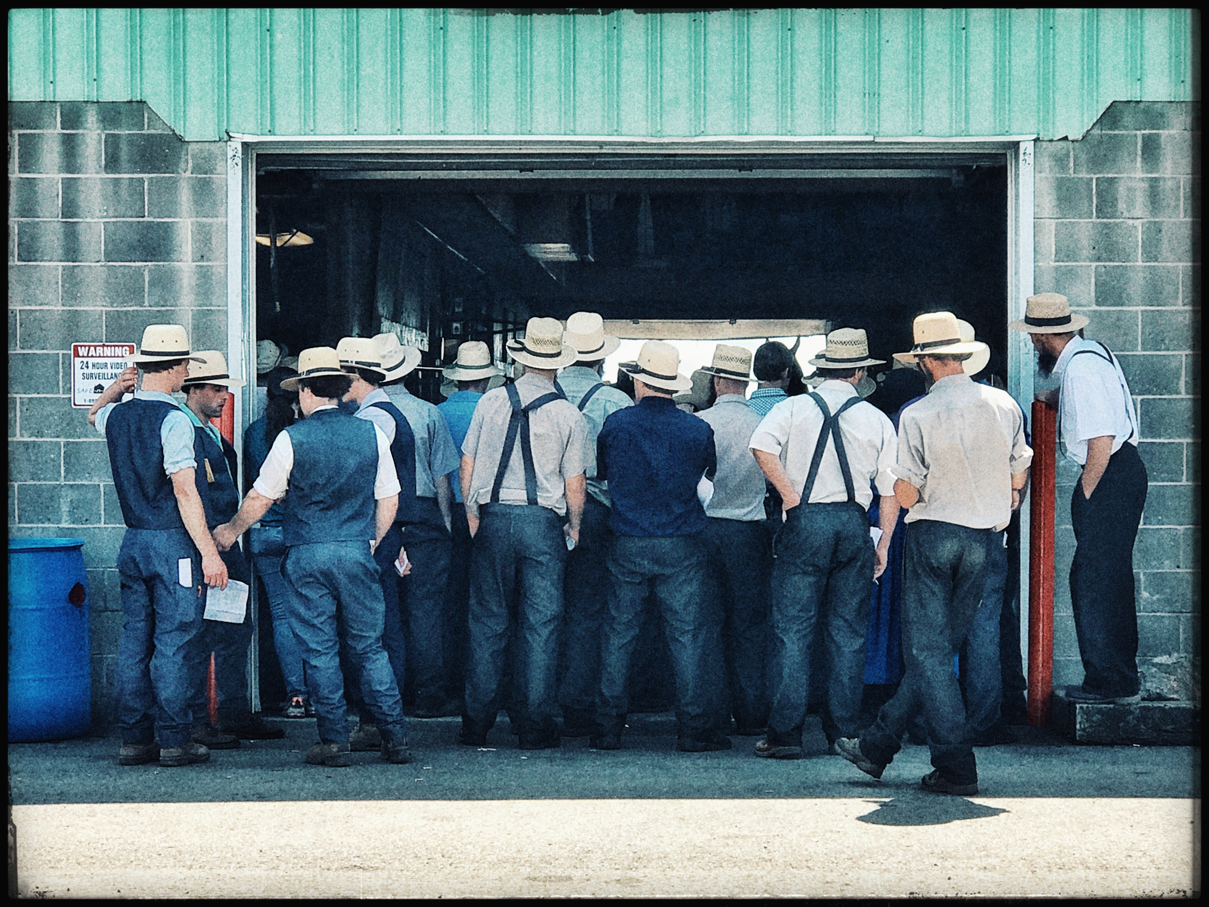 """Amish Horse Auction"" - Ohio"