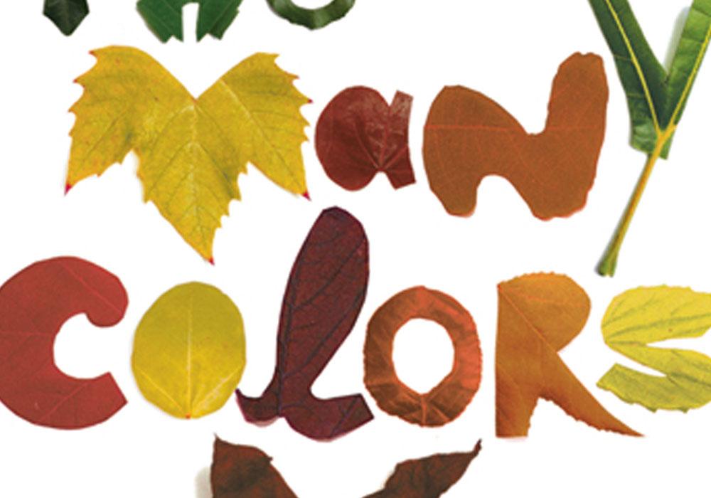 Custom Typography Visual I.D. Many Colors Yoga Retreat