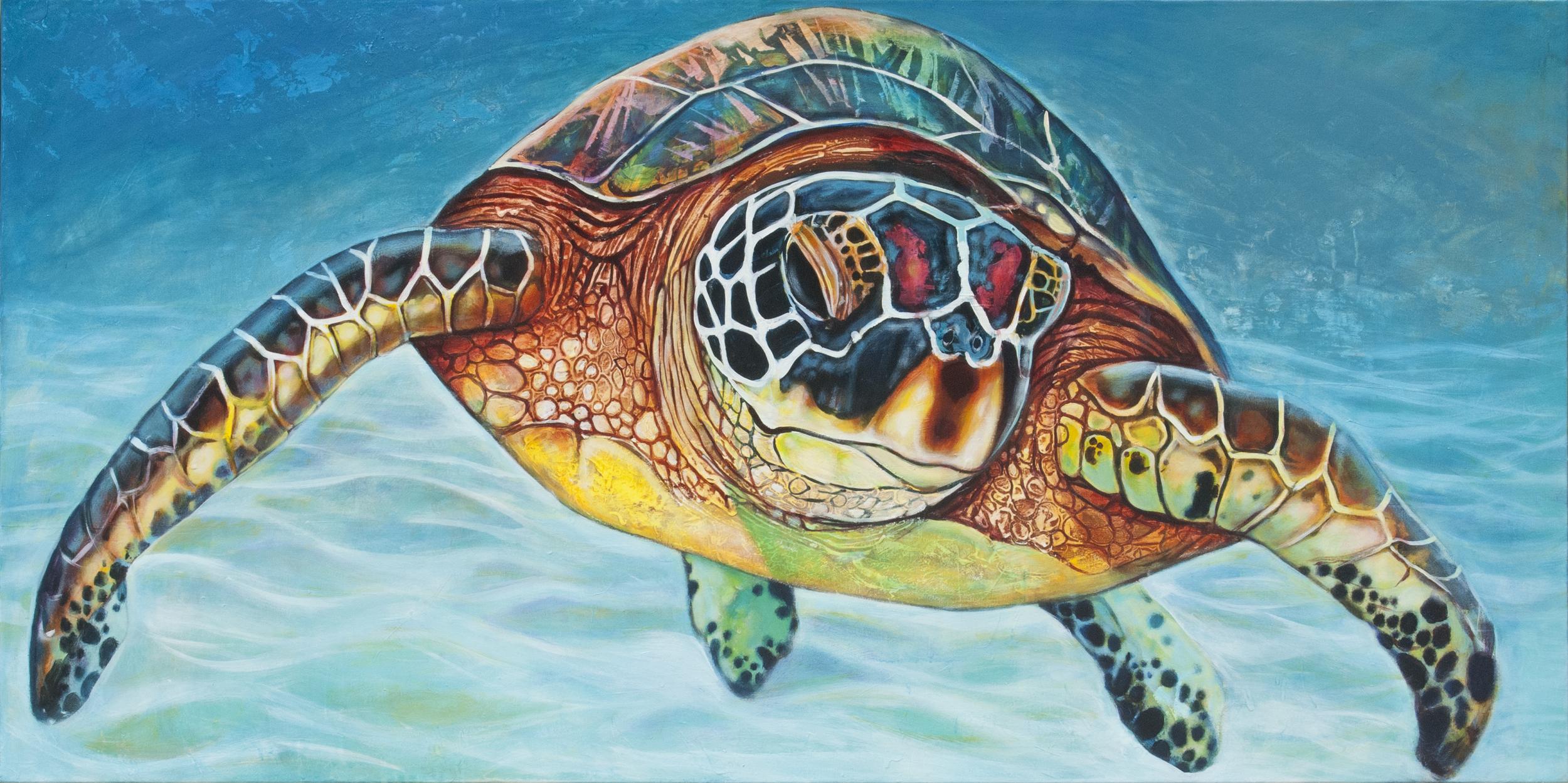 Curious Sea Turtle