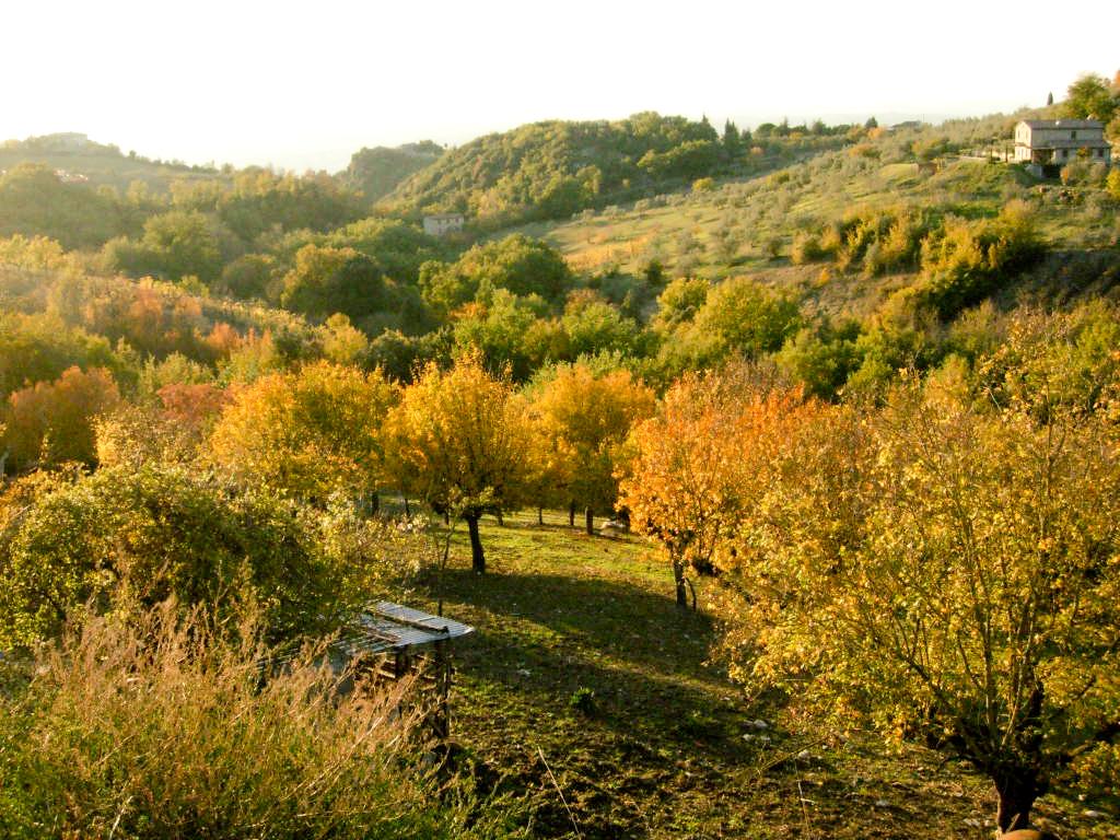 italie-montecchio-080.jpg