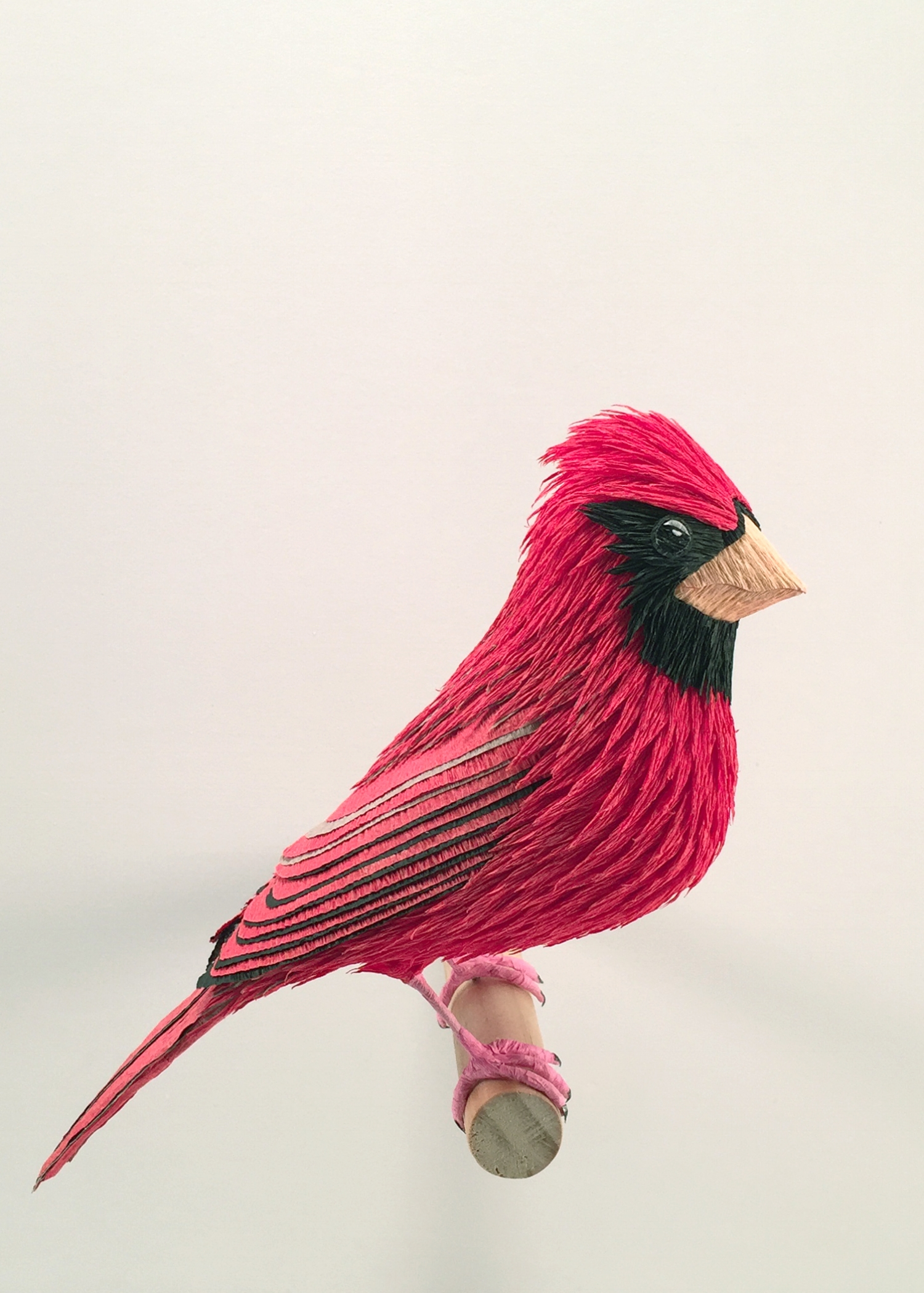 Cardinal.jpg