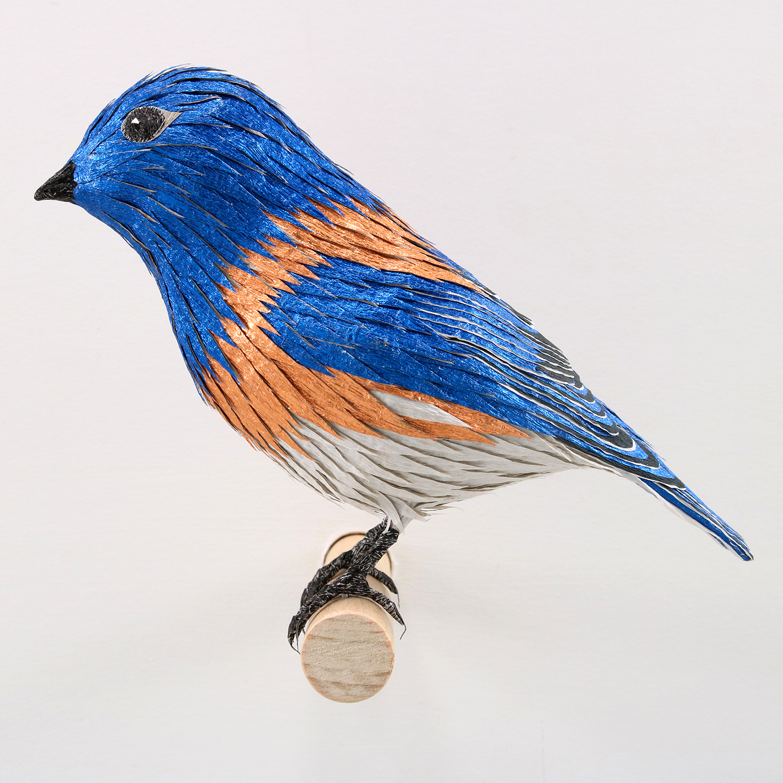 BluebirdWeb.jpg