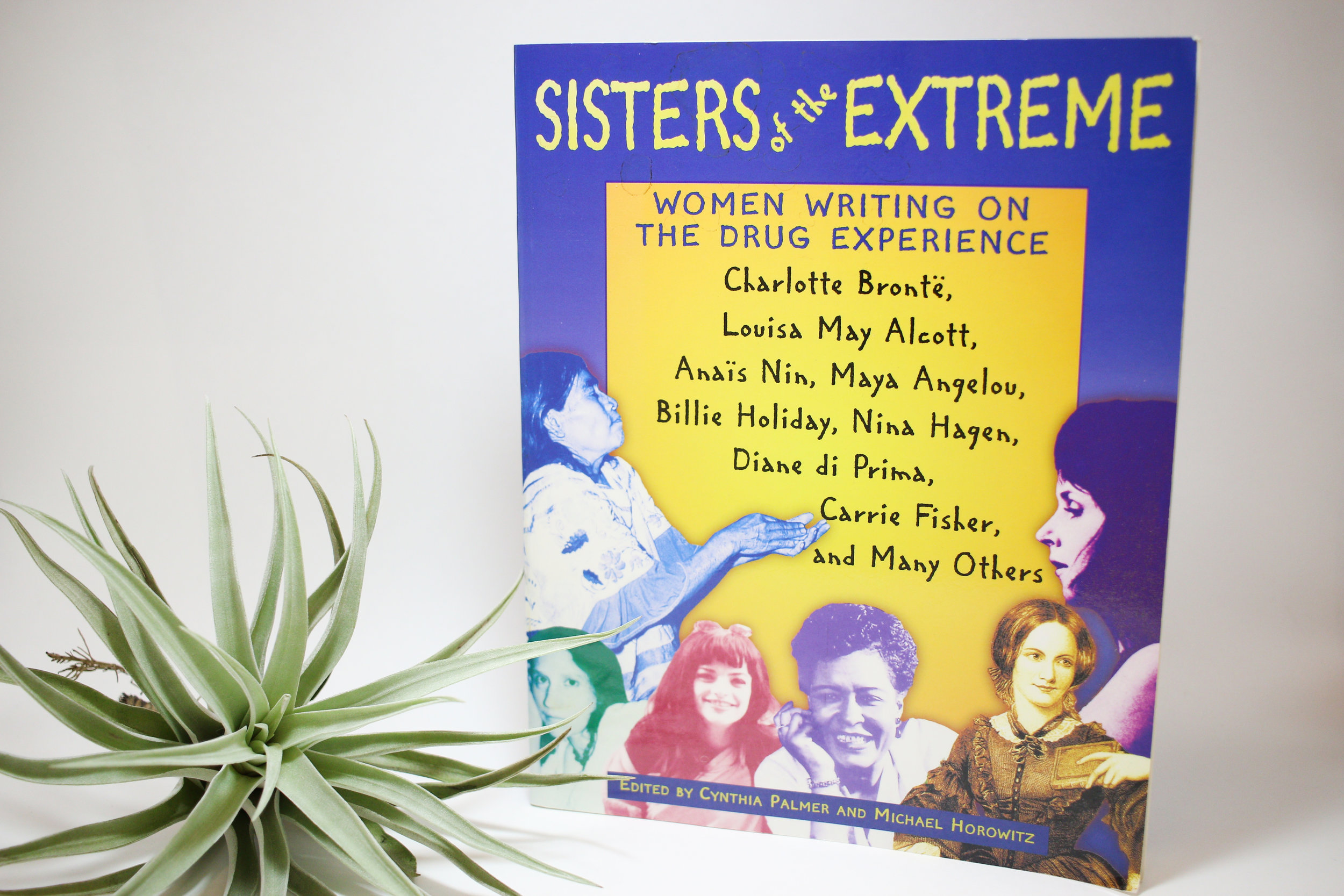 """""""Sisters of the Extreme"""""""