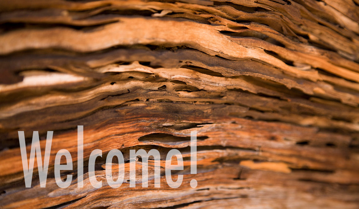 Welcom_6x3_05.jpg