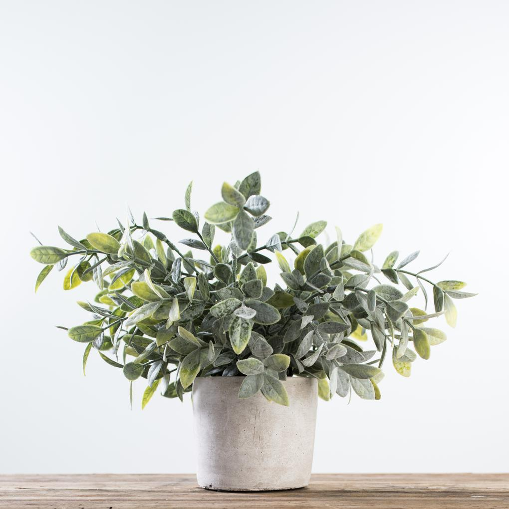 Magnolia Home Faux Sage Bush