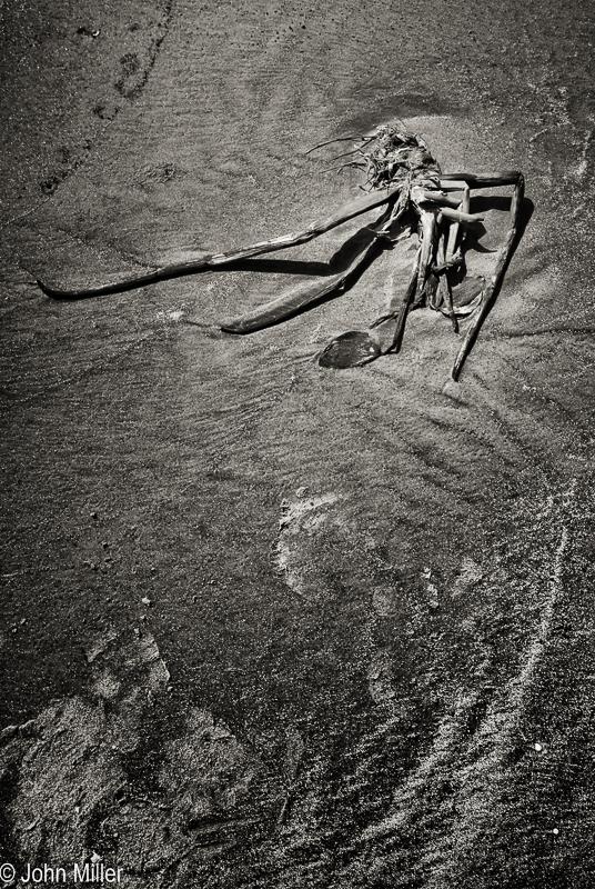Beach Things 1 - JohnMillerPhotography