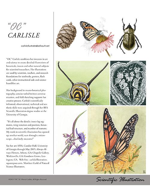 OC Carlisle Volume 3.2 CARLISLE.jpg