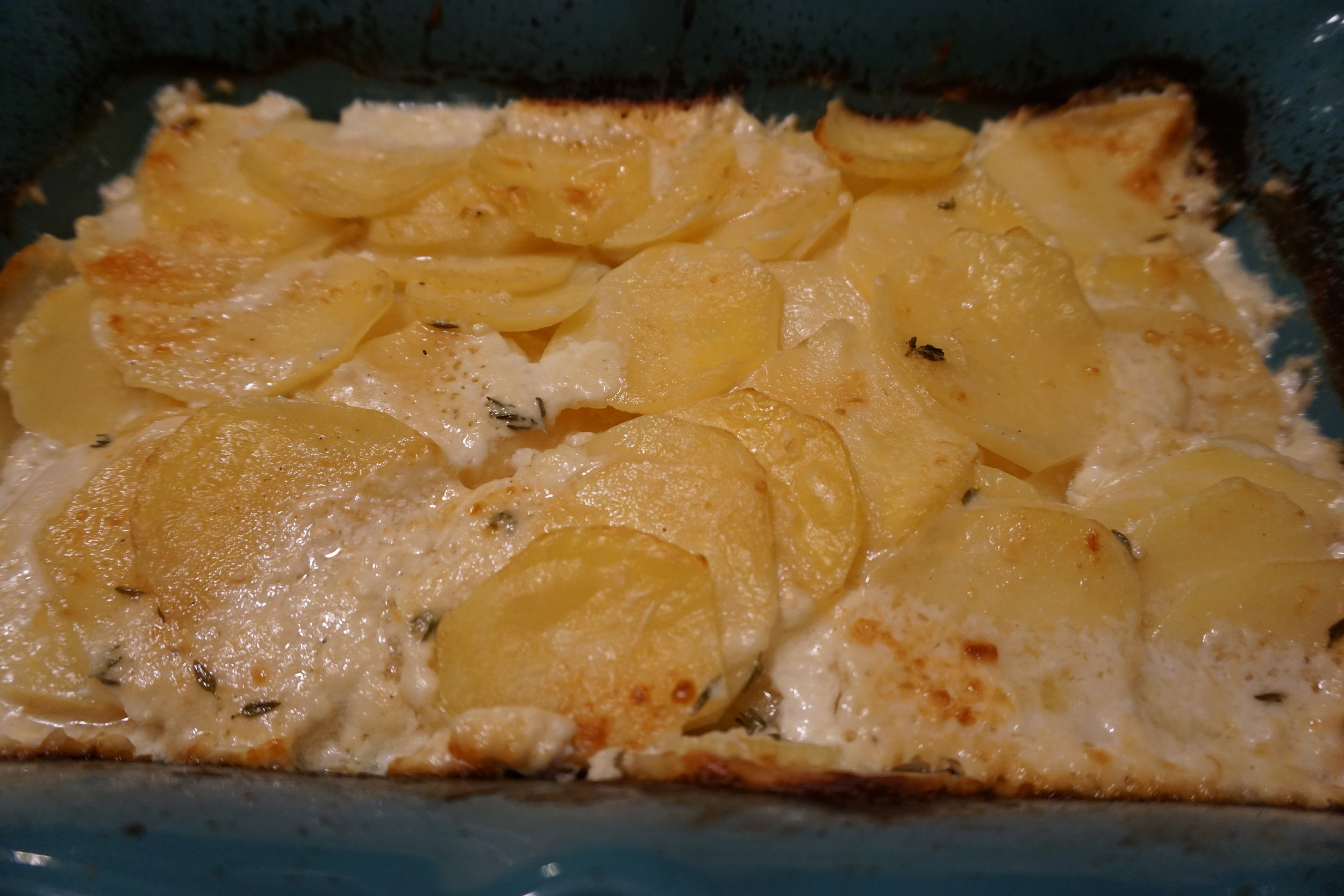 Everglades Potato Gratin - Perfect side dish for weeknight dinner or even a special holiday family meal.