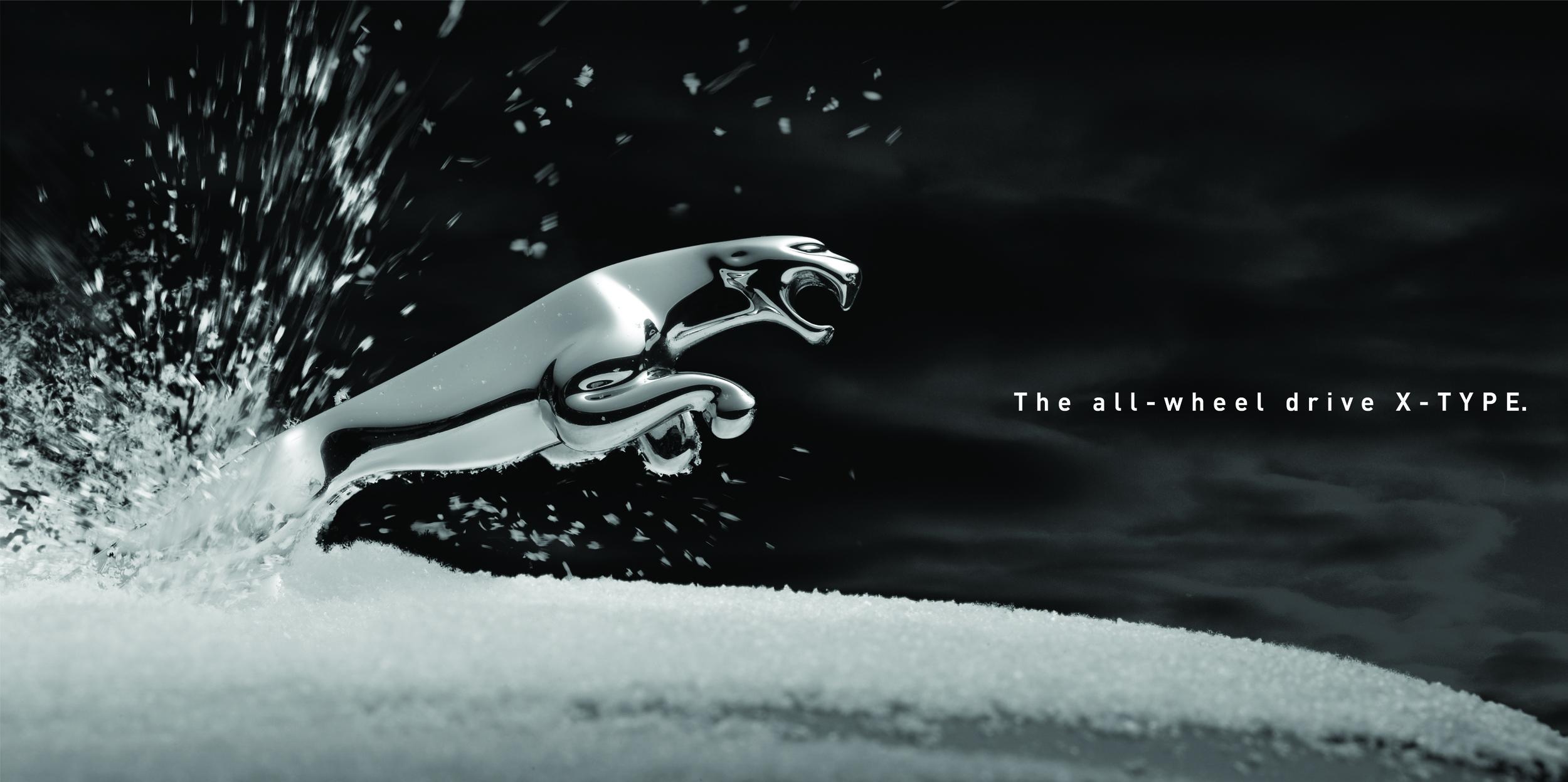 Snow leaper.jpg