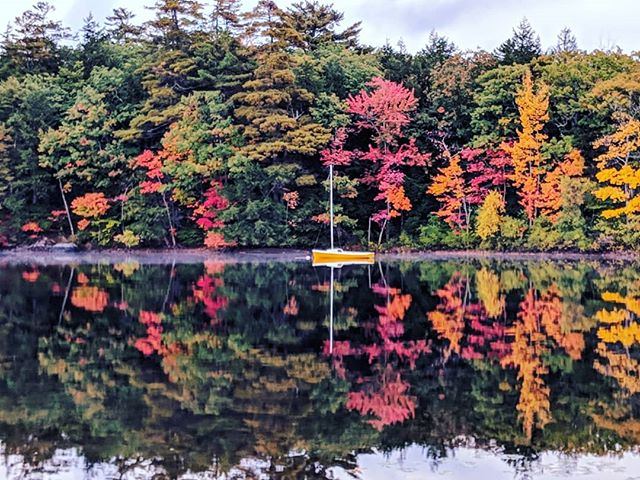 Fall reflections #fall #autumn #lake #maine #teampixel