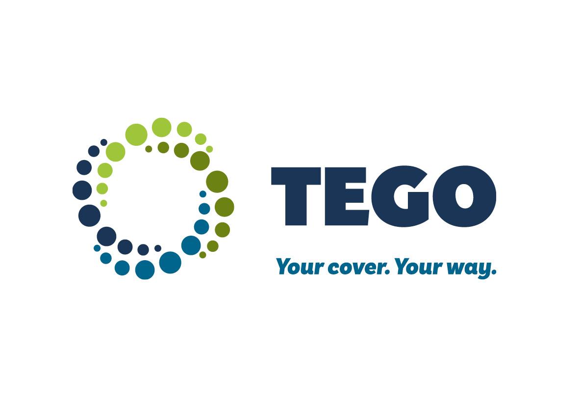 TEGO2.jpg