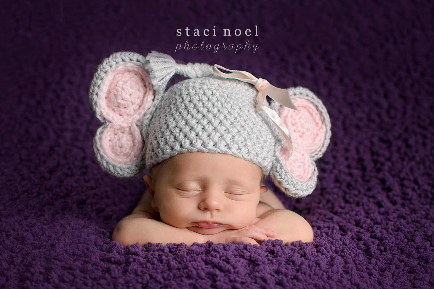 Charlotte NC newborn baby girl photographed Staci Noel Photography in elephant hat on purple blanket