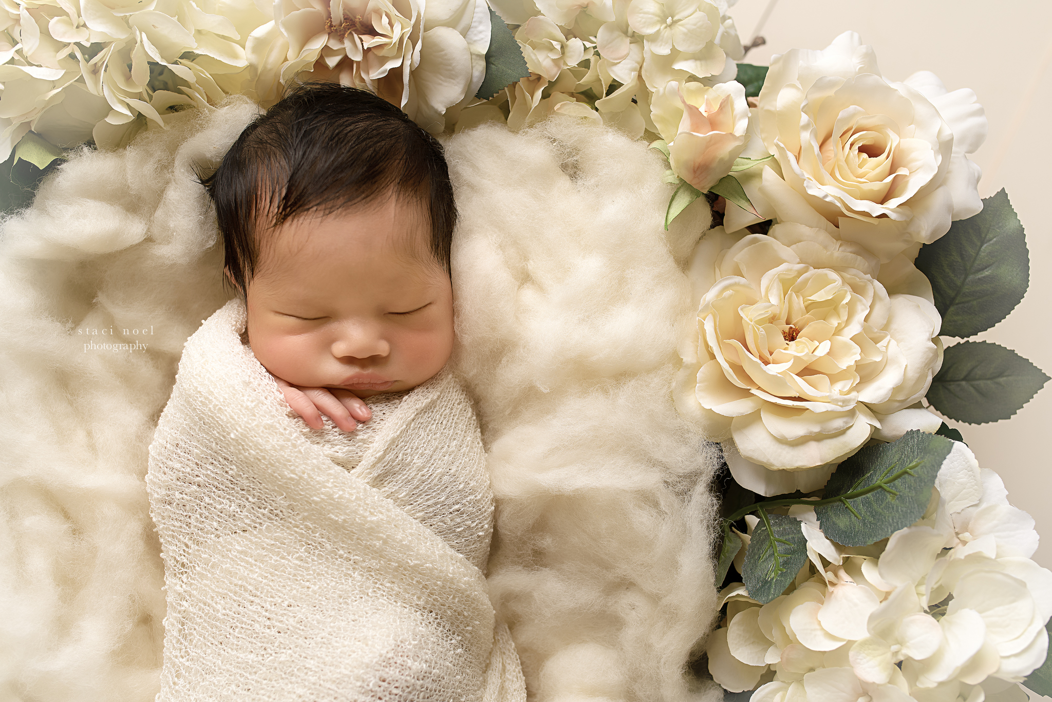 charlotte newborn photography baby girl and flowers
