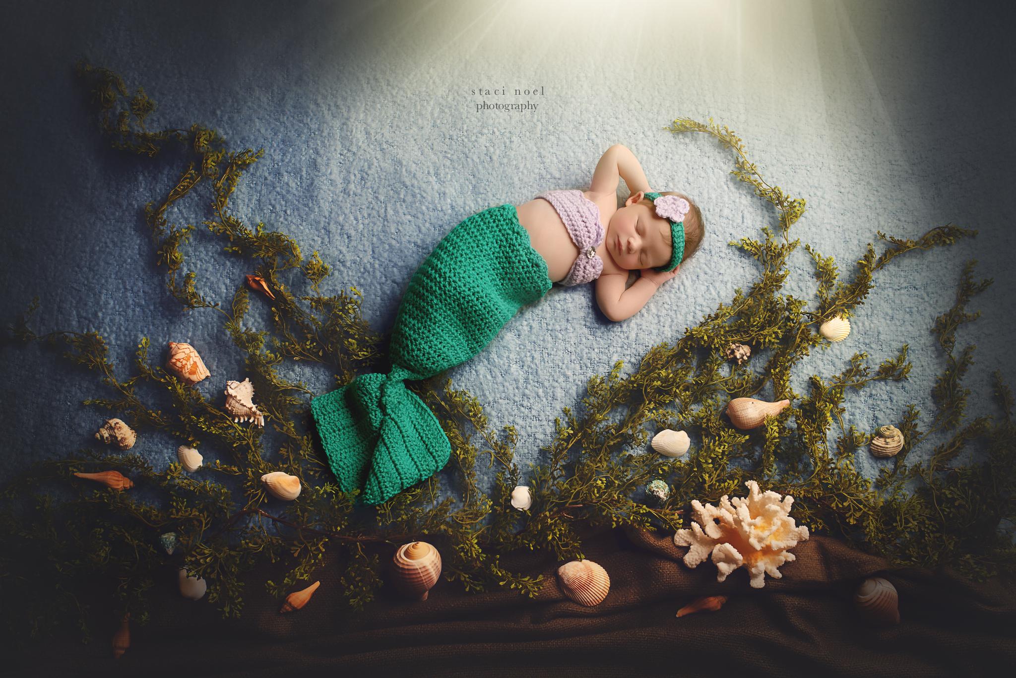 charlotte newborn photographer   mermaid newborn