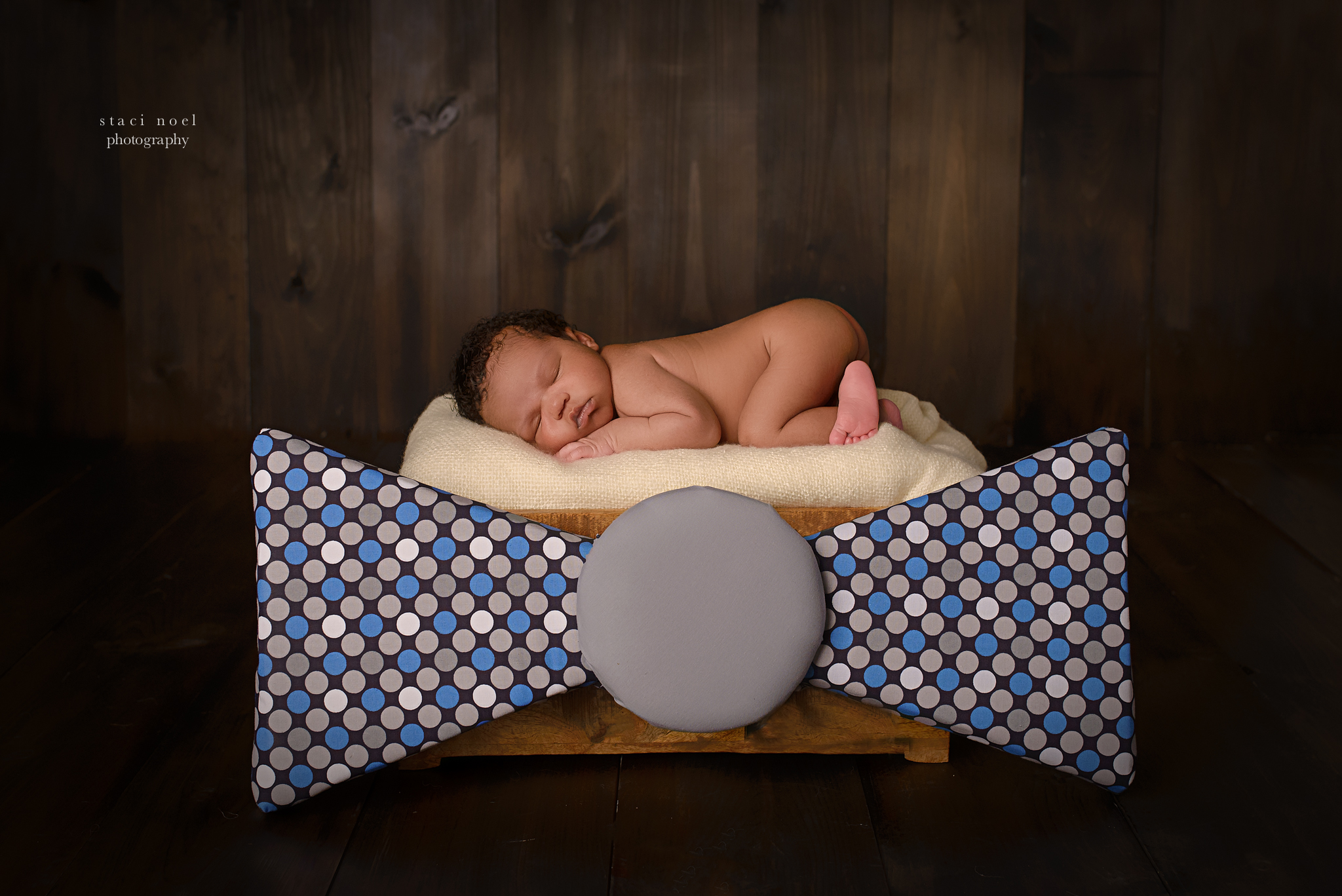 charlotte newborn photographer staci noel