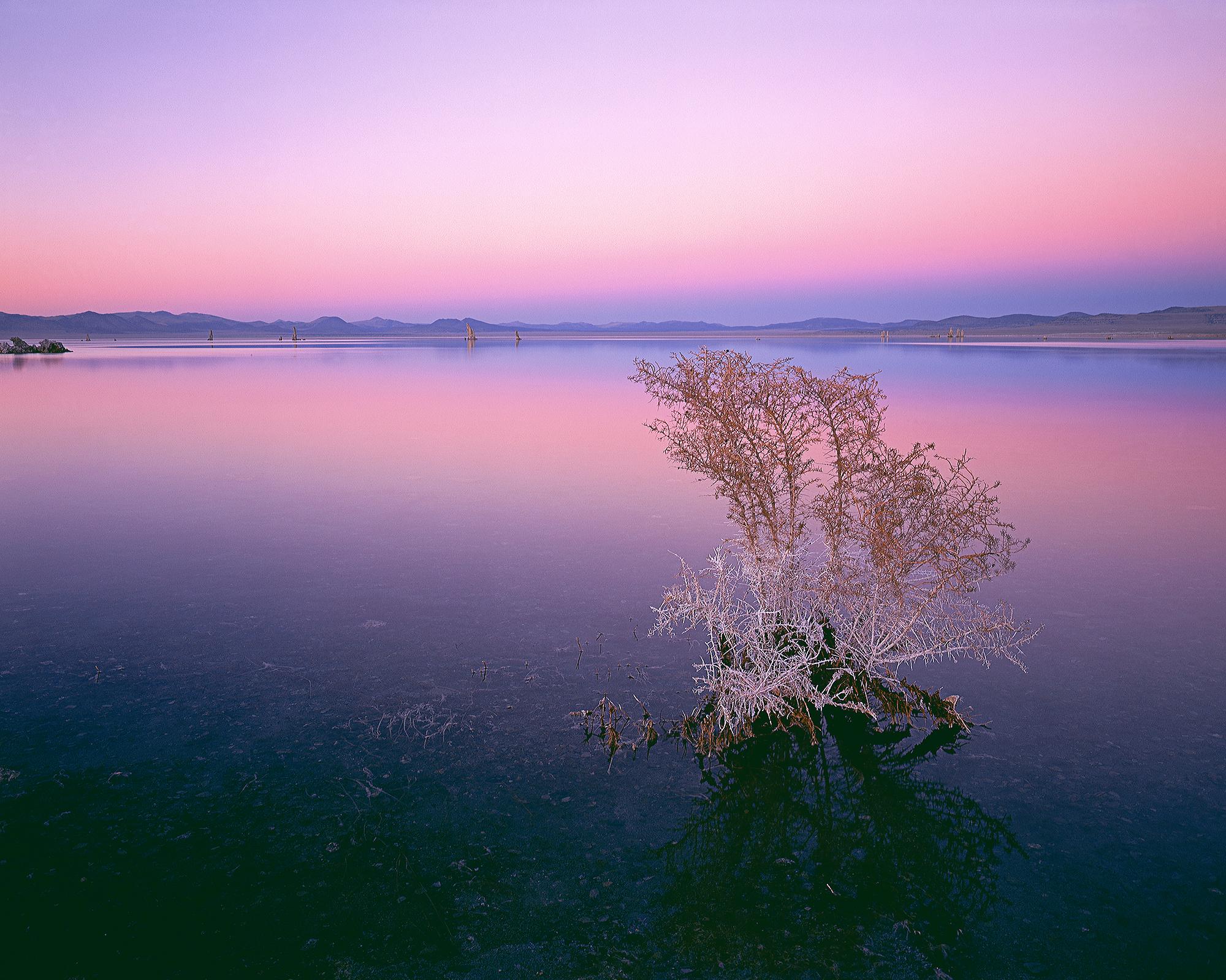 Mono Sunset.jpg