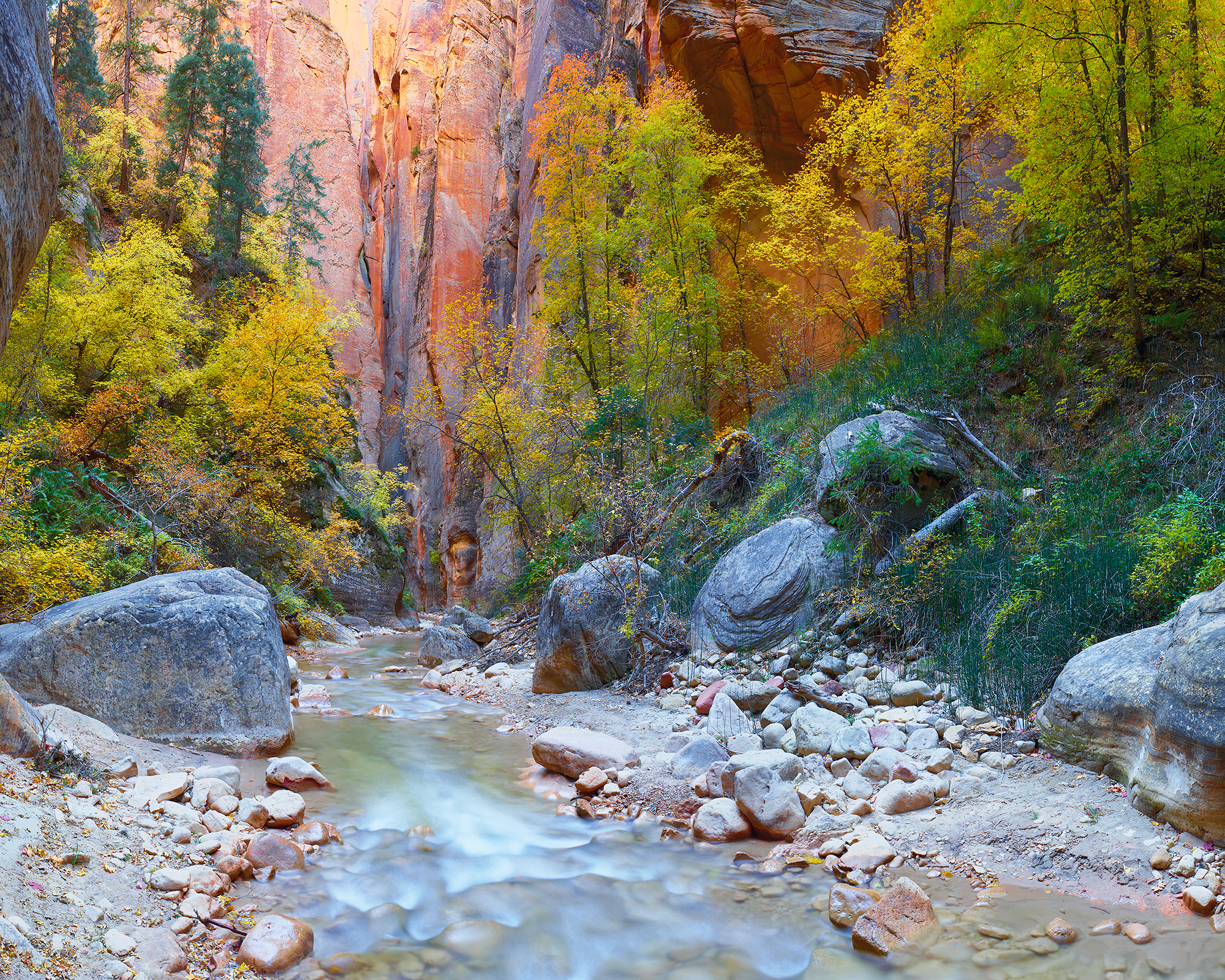 The Narrows - Cottonwood and Creek - USE ME.jpg