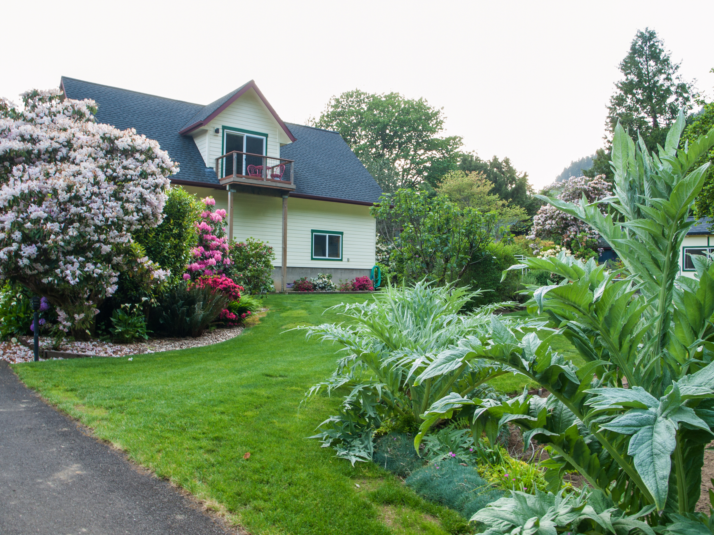 We have fruit trees, flowers, a large garden, chickens and a large lawn in our front yard.