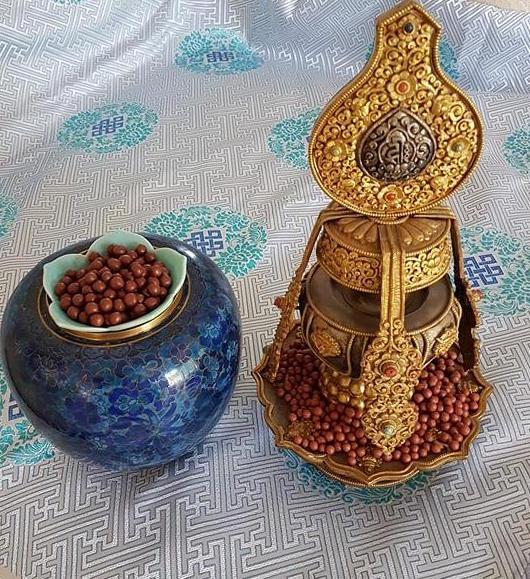 Copy of Tseril Papta